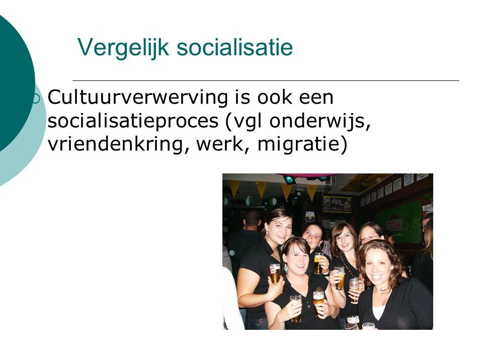 Vergelijk socialisatie  Cultuurverwerving is ook een socialisatieproces (vgl onderwijs, vriendenkring, werk, migratie)