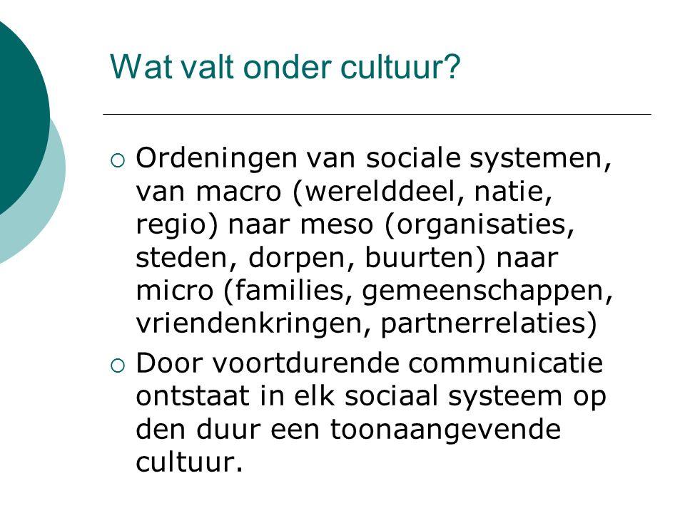 Wat valt onder cultuur?  Ordeningen van sociale systemen, van macro (werelddeel, natie, regio) naar meso (organisaties, steden, dorpen, buurten) naar