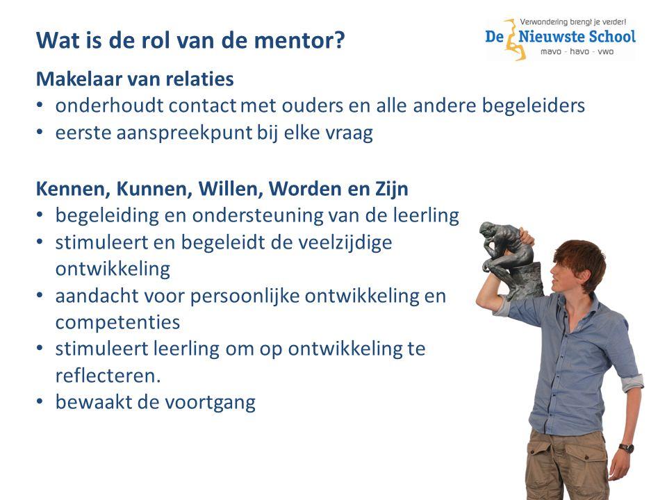 Wat is de rol van de mentor.