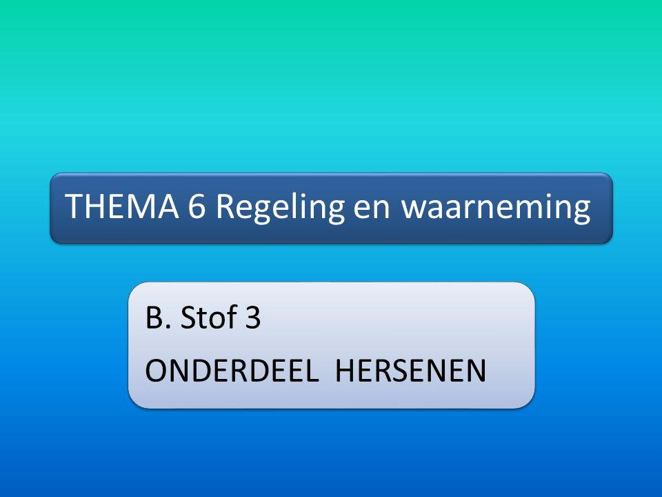 THEMA 6 Regeling en waarneming B. Stof 3 ONDERDEEL HERSENEN