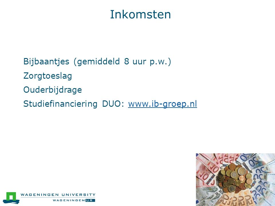 Inkomsten  Bijbaantjes (gemiddeld 8 uur p.w.)  Zorgtoeslag  Ouderbijdrage  Studiefinanciering DUO: www.ib-groep.nlwww.ib-groep.nl