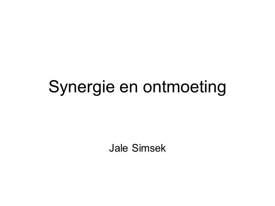 Synergie en ontmoeting Jale Simsek