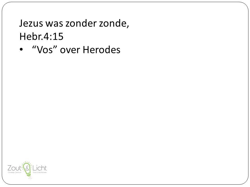 Jezus was zonder zonde, Hebr.4:15 Vos over Herodes