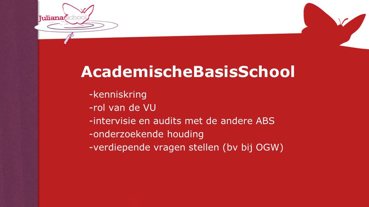 AcademischeBasisSchool -kenniskring -rol van de VU -intervisie en audits met de andere ABS -onderzoekende houding -verdiepende vragen stellen (bv bij