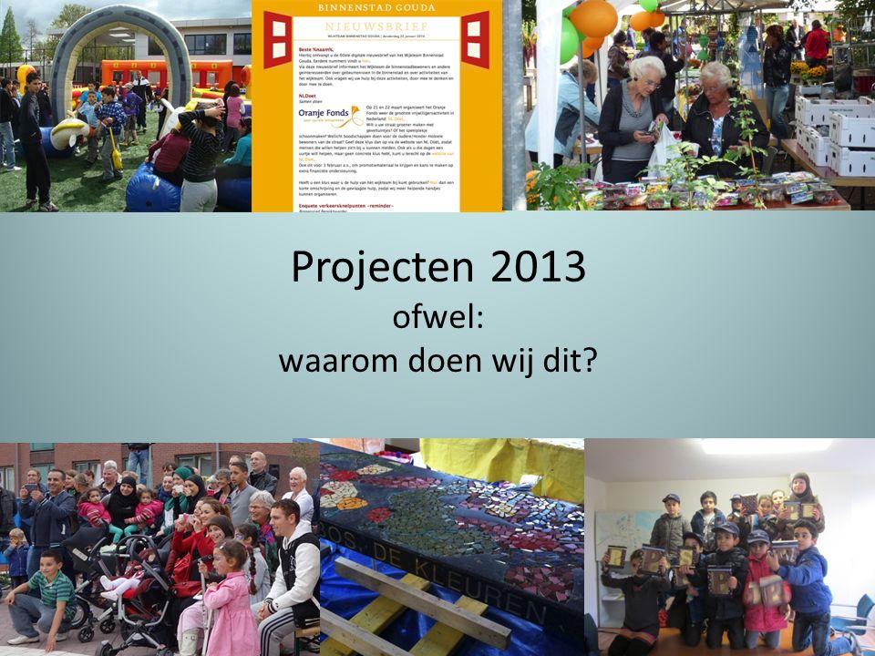 Projecten 2013 ofwel: waarom doen wij dit?.