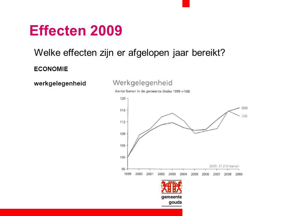 Welke effecten zijn er afgelopen jaar bereikt ECONOMIE werkgelegenheid Effecten 2009