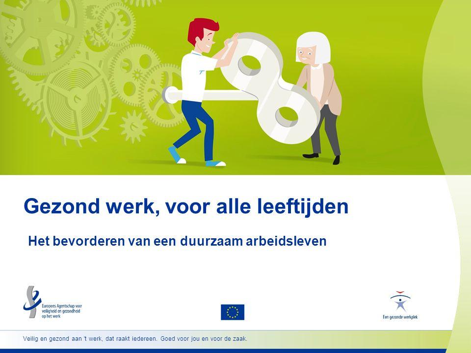 12 www.healthy-workplaces.eu/nl Personeelsbeheer en VGW-beheer  Samenwerking tussen stakeholders is bijzonder belangrijk, met name tussen personeelsbeheer en VGW-beheer  HR-beleid is van invloed op veiligheid en gezondheid, zoals beleid inzake: evenwicht tussen werk en privéleven arbeidstijden een leven lang leren loopbaanontwikkeling  HR-beleid zou VGW-beheer voor alle leeftijdsgroepen moeten ondersteunen