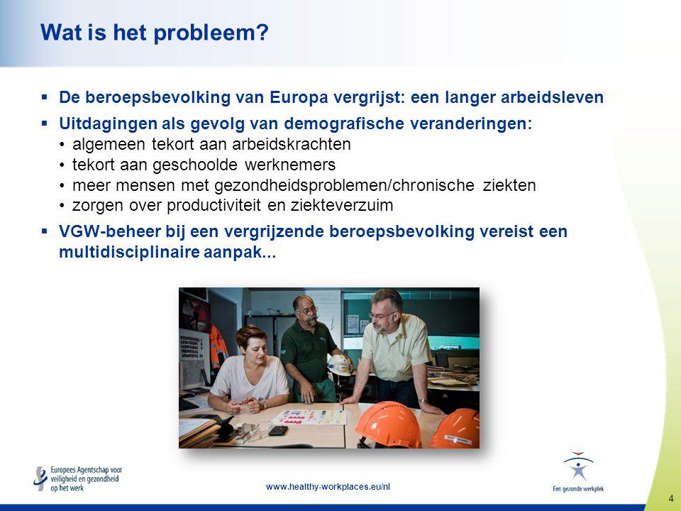 4 www.healthy-workplaces.eu/nl Wat is het probleem.