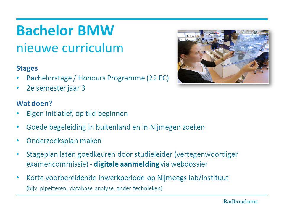 Bachelor BMW nieuwe curriculum Stages Bachelorstage / Honours Programme (22 EC) 2e semester jaar 3 Wat doen.