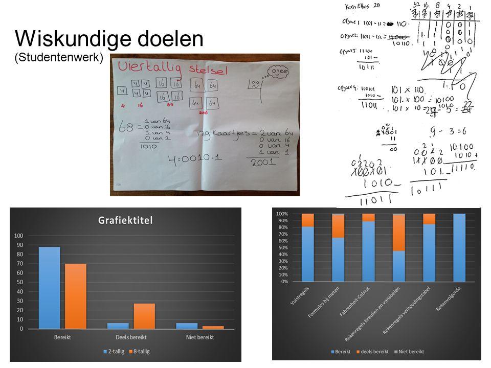 Wiskundige doelen (Studentenwerk)