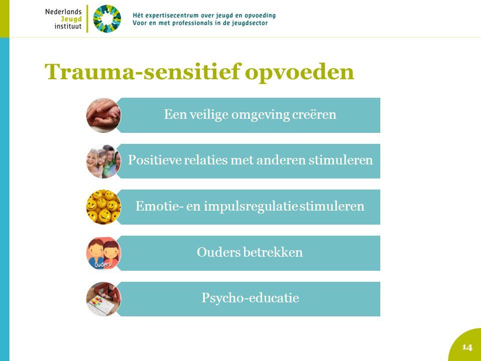 Trauma-sensitief opvoeden 14 Een veilige omgeving creëren Positieve relaties met anderen stimuleren Emotie- en impulsregulatie stimuleren Ouders betre