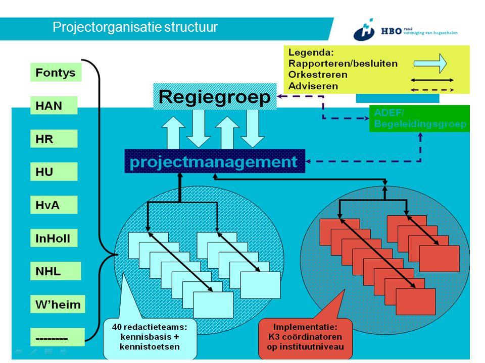 Projectorganisatie structuur
