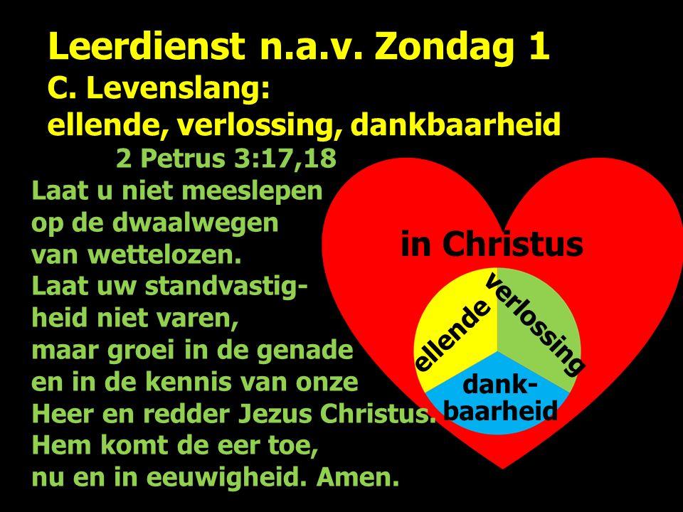 Leerdienst n.a.v. Zondag 1 C. Levenslang: ellende, verlossing, dankbaarheid ellende verlossing dank- baarheid 2 Petrus 3:17,18 Laat u niet meeslepen o