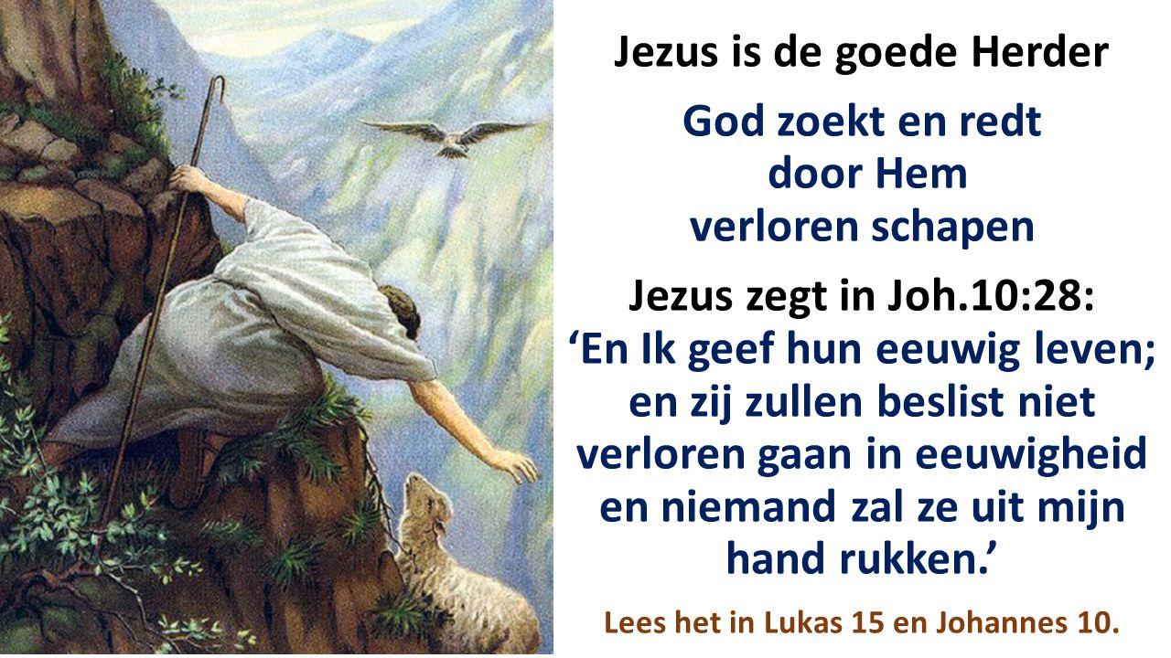 Jezus is de goede Herder God zoekt en redt door Hem verloren schapen Jezus zegt in Joh.10:28: 'En Ik geef hun eeuwig leven; en zij zullen beslist niet verloren gaan in eeuwigheid en niemand zal ze uit mijn hand rukken.' Lees het in Lukas 15 en Johannes 10.