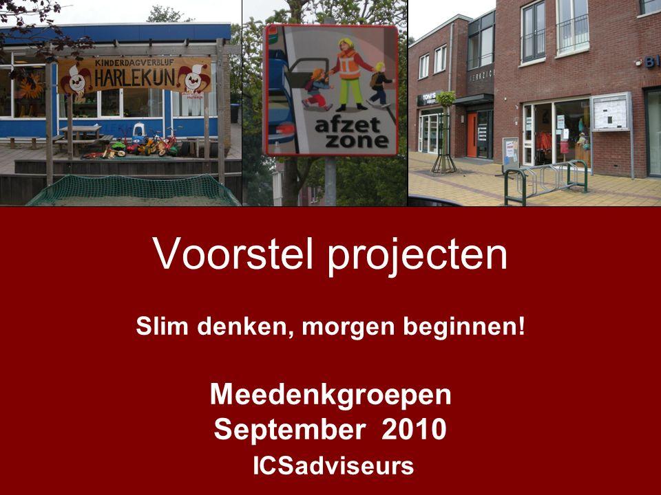 Voorstel projecten Slim denken, morgen beginnen! Meedenkgroepen September 2010 ICSadviseurs