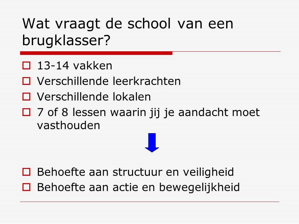 Wat vraagt de school van een brugklasser.