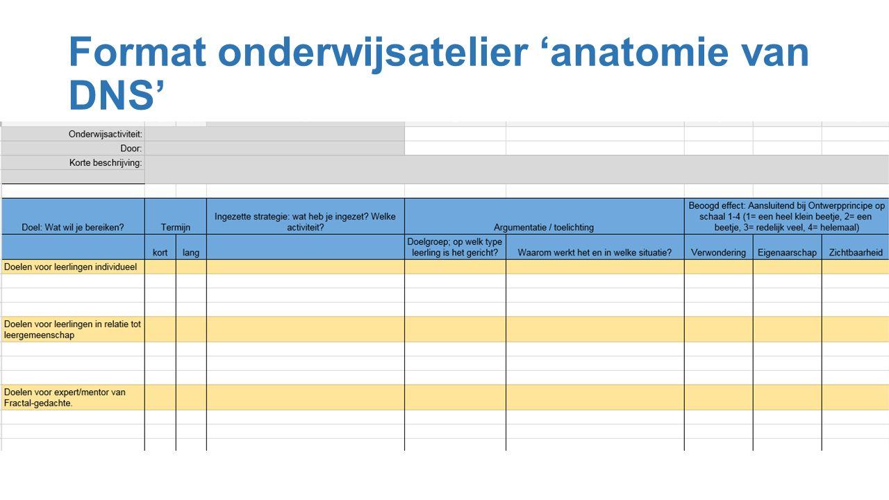 Format onderwijsatelier 'anatomie van DNS'