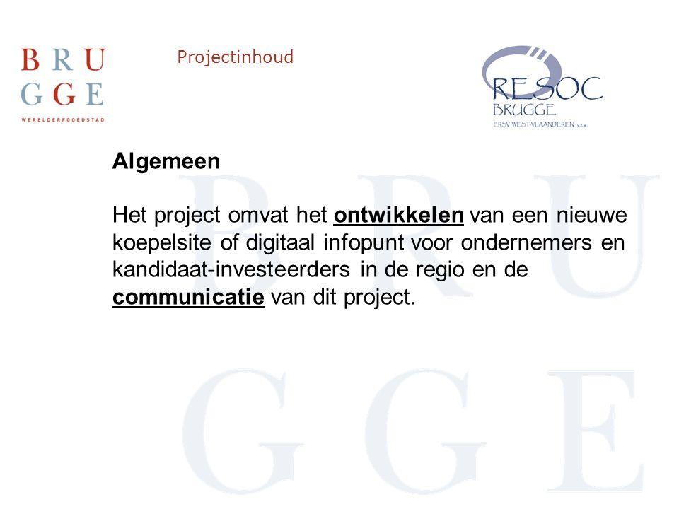 Projectinhoud Algemeen Het project omvat het ontwikkelen van een nieuwe koepelsite of digitaal infopunt voor ondernemers en kandidaat-investeerders in de regio en de communicatie van dit project.