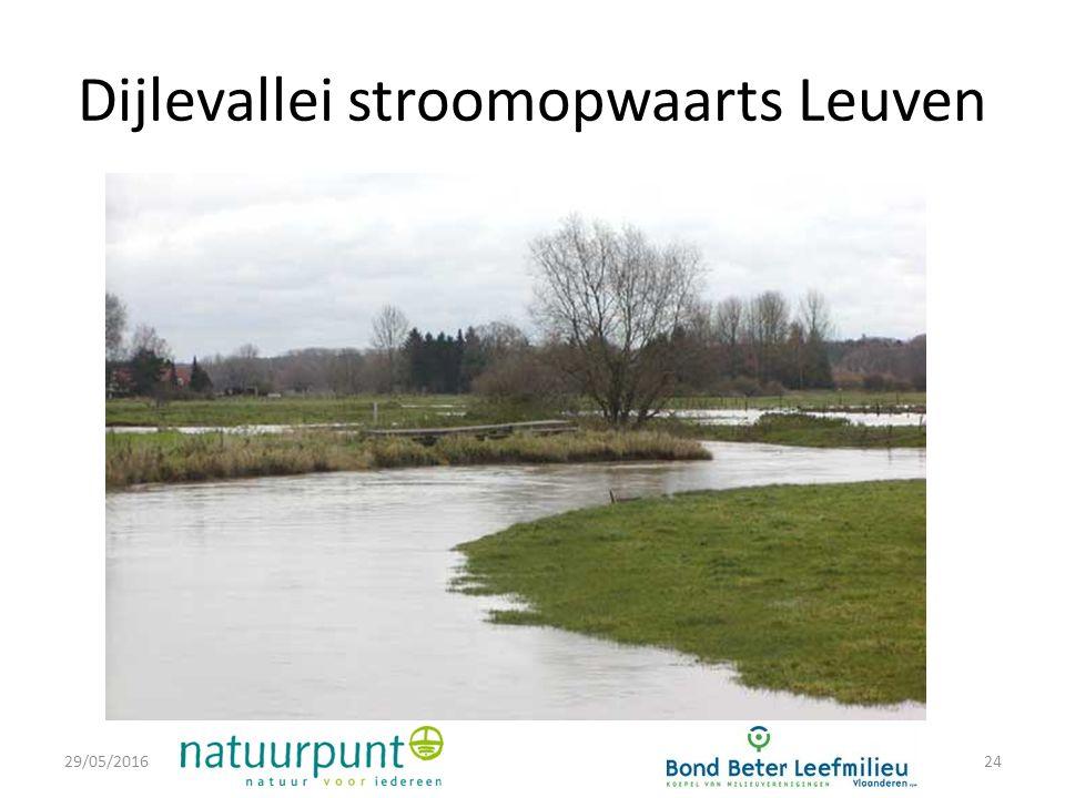 Dijlevallei stroomopwaarts Leuven 29/05/201624