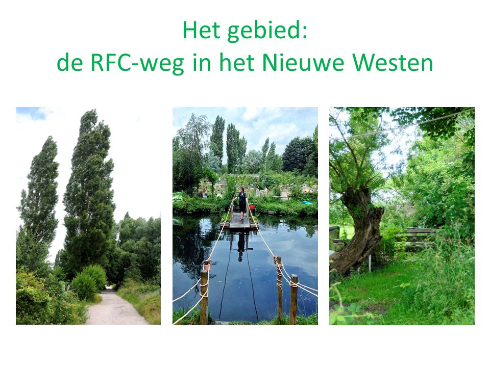 Het gebied: de RFC-weg in het Nieuwe Westen