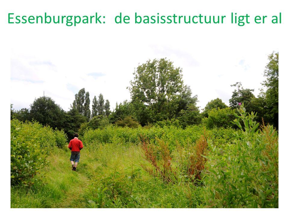 Essenburgpark: de basisstructuur ligt er al