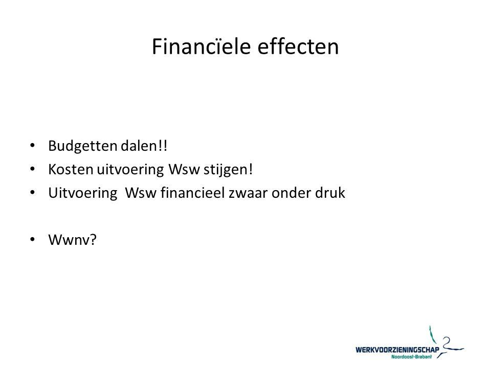 Financïele effecten Budgetten dalen!. Kosten uitvoering Wsw stijgen.