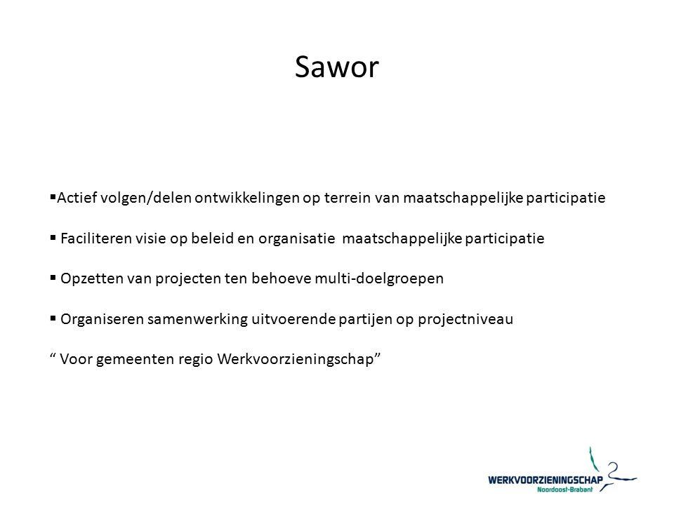 Sawor  Actief volgen/delen ontwikkelingen op terrein van maatschappelijke participatie  Faciliteren visie op beleid en organisatie maatschappelijke participatie  Opzetten van projecten ten behoeve multi-doelgroepen  Organiseren samenwerking uitvoerende partijen op projectniveau Voor gemeenten regio Werkvoorzieningschap