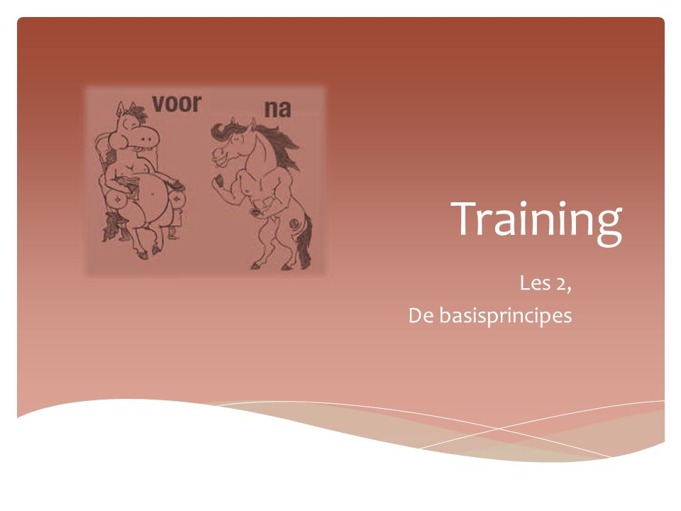 Training Les 2, De basisprincipes
