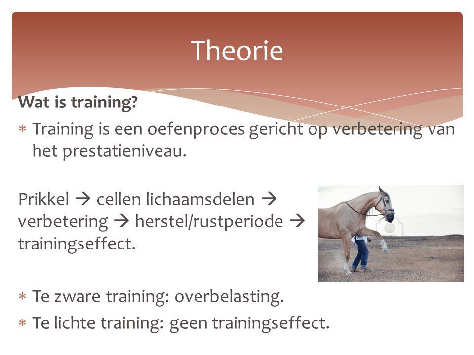 Wat is training.  Training is een oefenproces gericht op verbetering van het prestatieniveau.