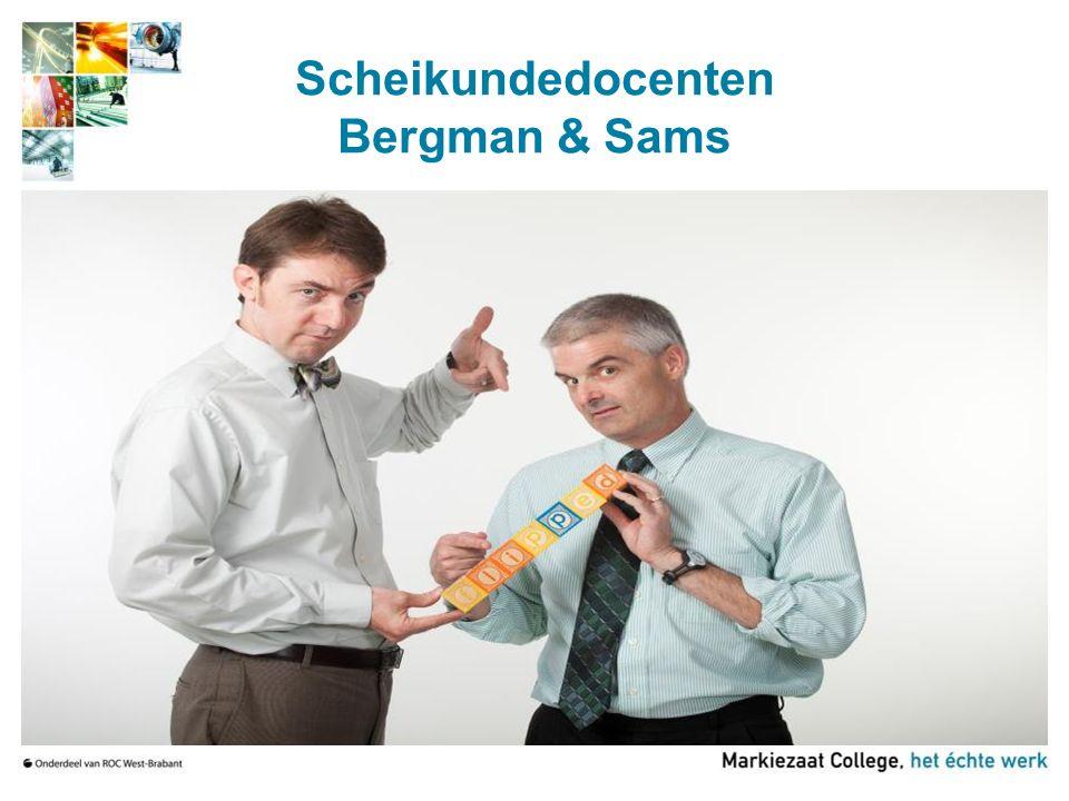 Scheikundedocenten Bergman & Sams