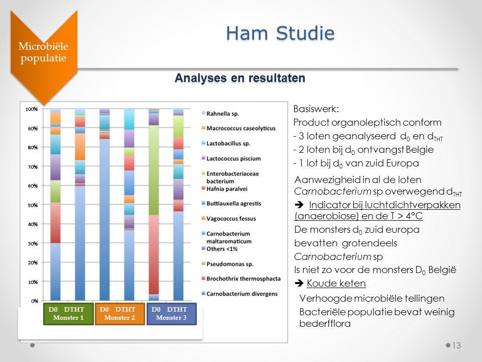 13 Microbiële populatie Ham Studie Analyses en resultaten Basiswerk: Product organoleptisch conform - 3 loten geanalyseerd d 0 en d THT - 2 loten bij