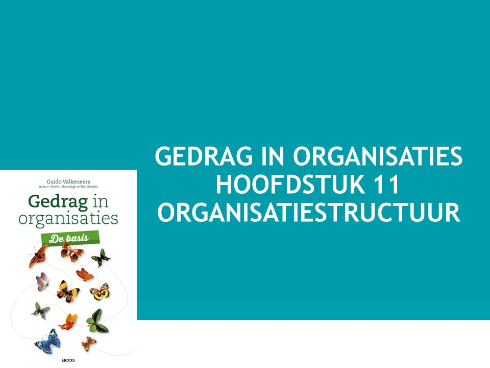 GEDRAG IN ORGANISATIES HOOFDSTUK 11 ORGANISATIESTRUCTUUR 1