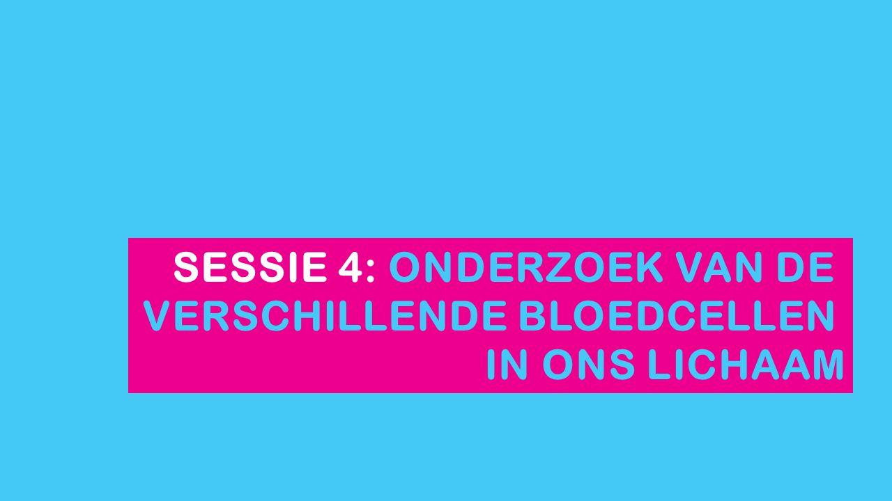 SESSIE 4: ONDERZOEK VAN DE VERSCHILLENDE BLOEDCELLEN IN ONS LICHAAM