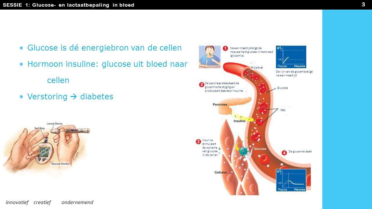 Glucose is dé energiebron van de cellen Hormoon insuline: glucose uit bloed naar cellen Verstoring  diabetes SESSIE 1: Glucose- en lactaatbepaling in bloed 3 innovatiefcreatiefondernemend Na een maaltijd stijgt de hoeveelheid glucose in het bloed (glycemie) De lijn van de glycemie stijgt na een maaltijd Glucose RBC De pancreas detecteert de glycemische stijging en produceert daardoor insuline De glycemie daalt Insuline stimuleert de opname van glucose in de cellen Bloedvat