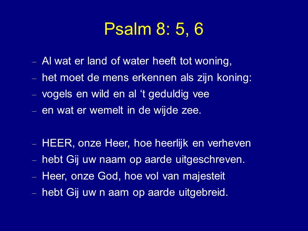 Psalm 8: 5, 6  Al wat er land of water heeft tot woning,  het moet de mens erkennen als zijn koning:  vogels en wild en al 't geduldig vee  en wat er wemelt in de wijde zee.