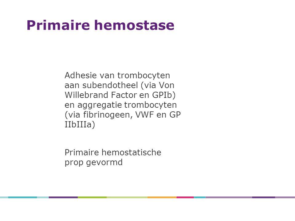 Adhesie van trombocyten aan subendotheel (via Von Willebrand Factor en GPIb) en aggregatie trombocyten (via fibrinogeen, VWF en GP IIbIIIa) Primaire hemostatische prop gevormd Primaire hemostase