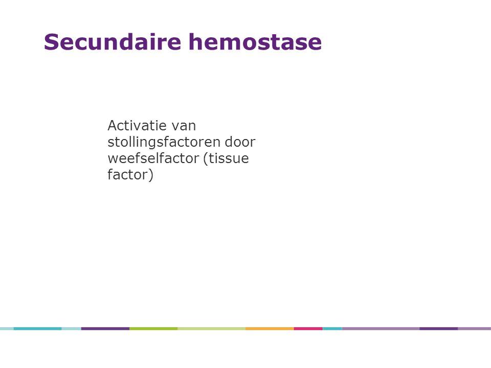 Activatie van stollingsfactoren door weefselfactor (tissue factor) Secundaire hemostase