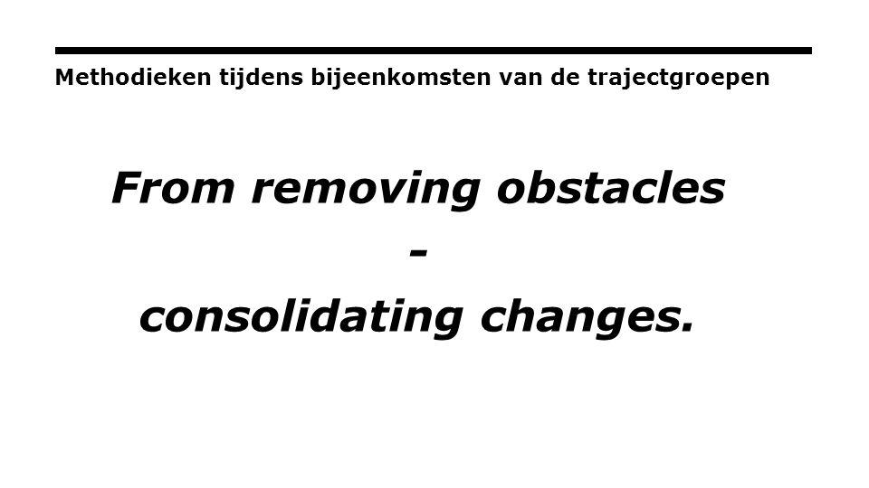 Methodieken tijdens bijeenkomsten van de trajectgroepen From removing obstacles - consolidating changes.
