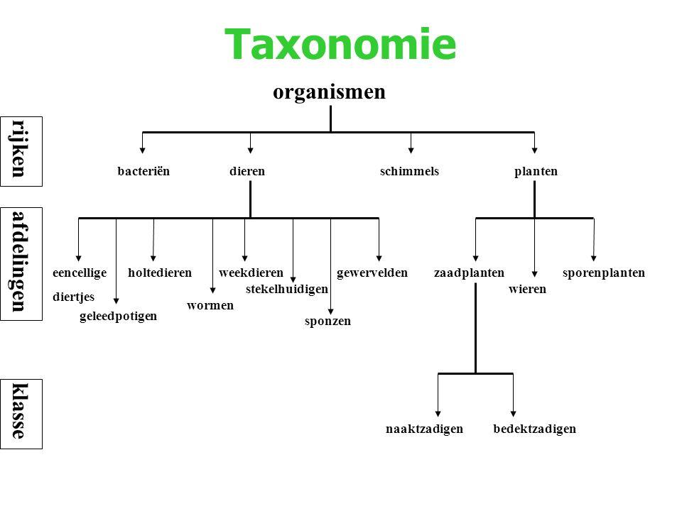 Taxonomie organismen dierenbacteriënplantenschimmels eencellige diertjes holtedierenweekdieren wormen stekelhuidigen geleedpotigen gewerveldenzaadplan