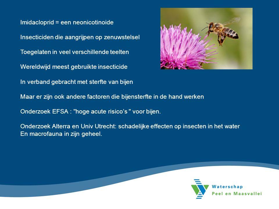 Imidacloprid = een neonicotinoide Insecticiden die aangrijpen op zenuwstelsel Toegelaten in veel verschillende teelten Wereldwijd meest gebruikte insecticide In verband gebracht met sterfte van bijen Maar er zijn ook andere factoren die bijensterfte in de hand werken Onderzoek EFSA : hoge acute risico's voor bijen.