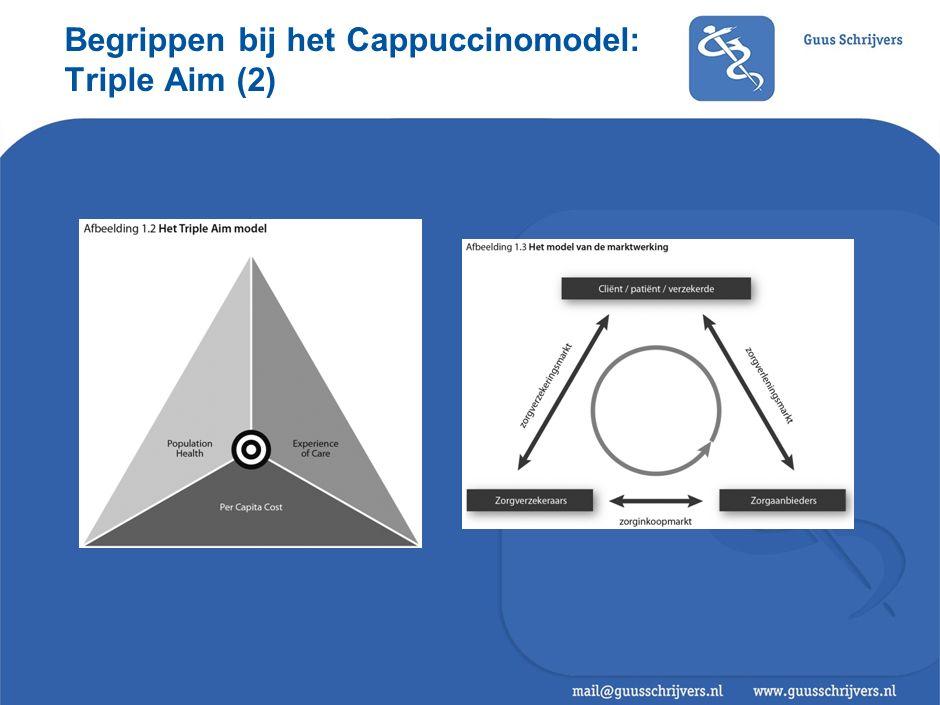 Begrippen bij het Cappuccinomodel: Triple Aim (2)