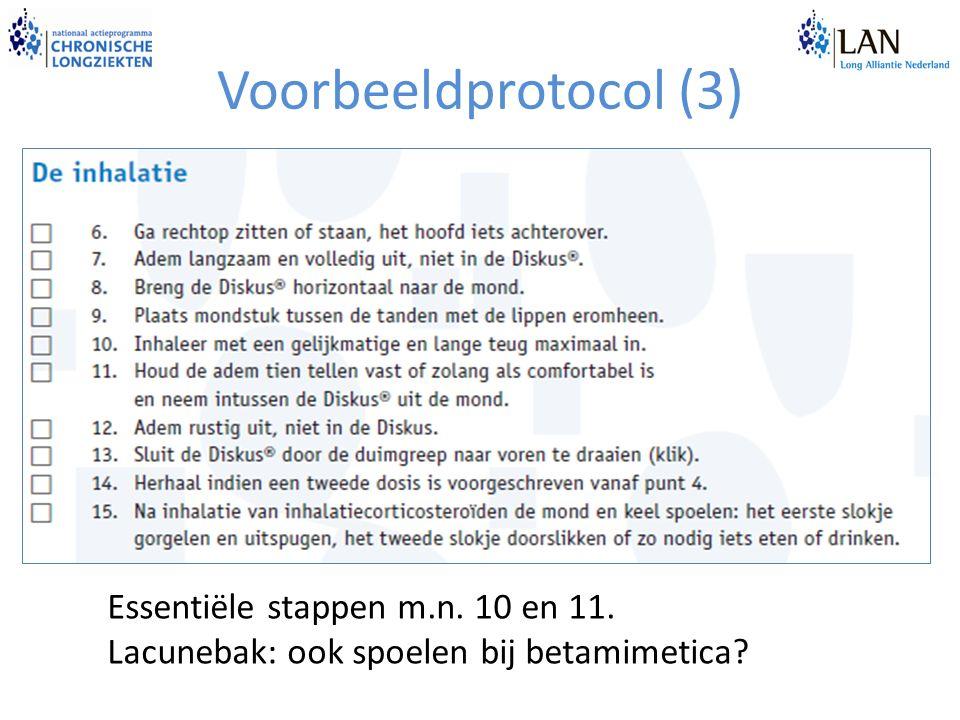 Voorbeeldprotocol (3) Essentiële stappen m.n. 10 en 11. Lacunebak: ook spoelen bij betamimetica?