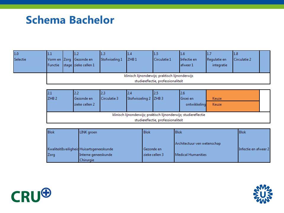 Schema Bachelor