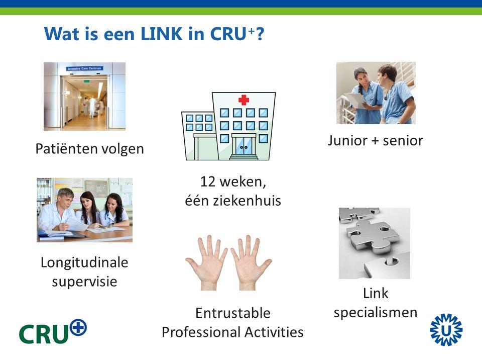 Wat is een LINK in CRU + ? Junior + senior 12 weken, één ziekenhuis Entrustable Professional Activities Longitudinale supervisie Patiënten volgen Link