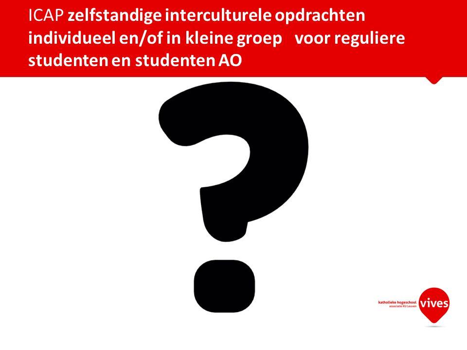 ICAP zelfstandige interculturele opdrachten individueel en/of in kleine groep voor reguliere studenten en studenten AO
