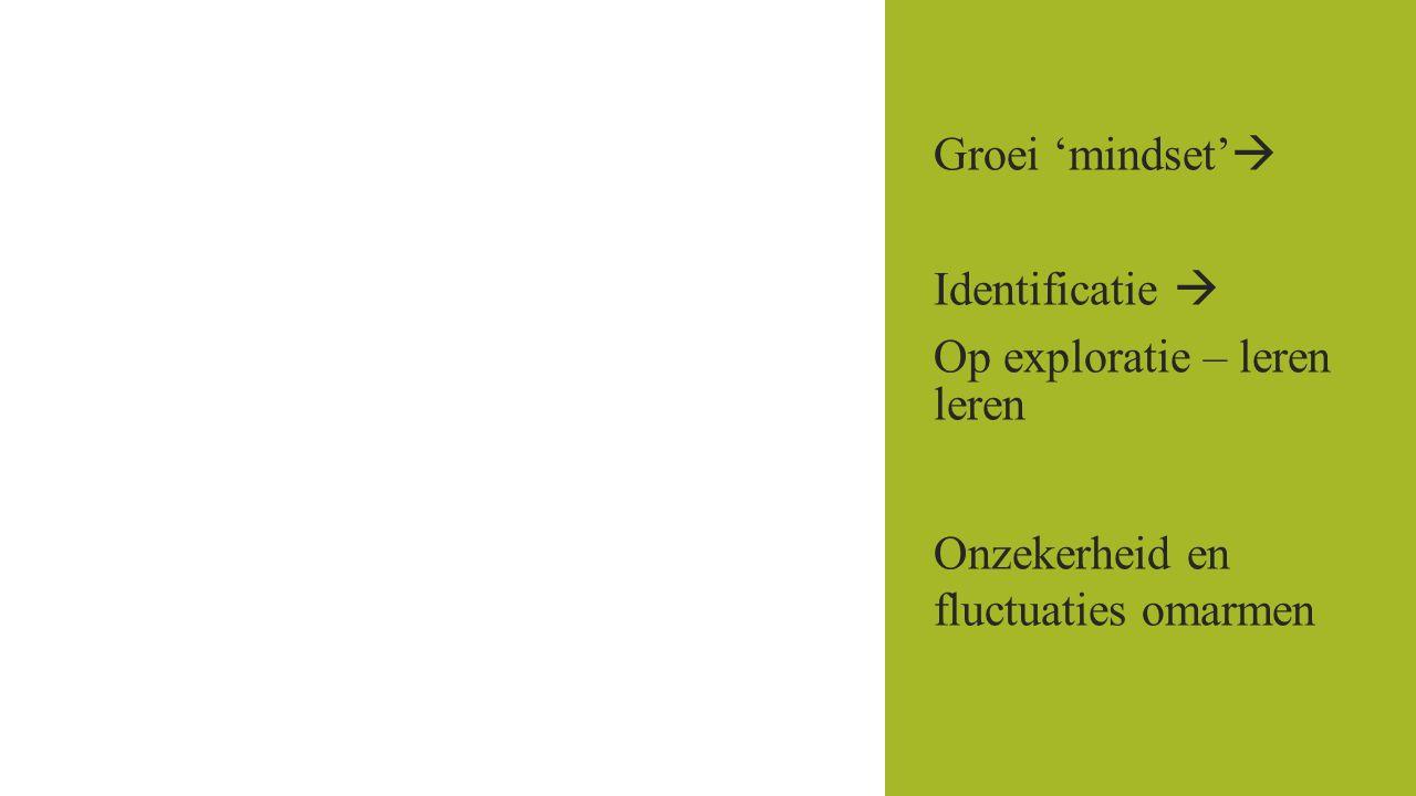 Groei 'mindset'  Identificatie  Op exploratie – leren leren Onzekerheid en fluctuaties omarmen