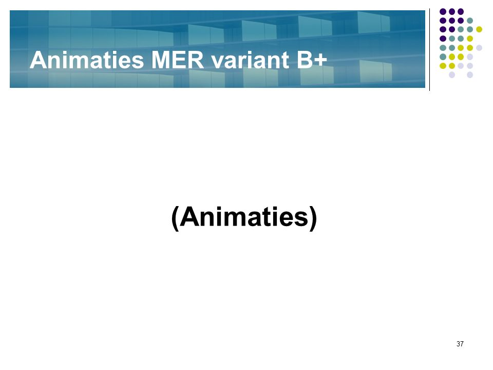37 Animaties MER variant B+ (Animaties)