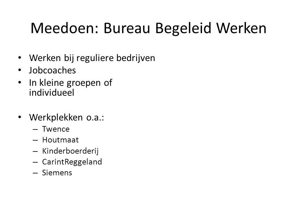 Meedoen: Bureau Begeleid Werken Werken bij reguliere bedrijven Jobcoaches In kleine groepen of individueel Werkplekken o.a.: – Twence – Houtmaat – Kinderboerderij – CarintReggeland – Siemens