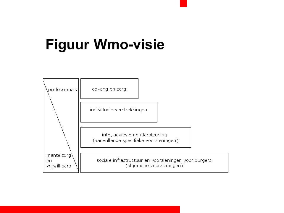 Figuur Wmo-visie