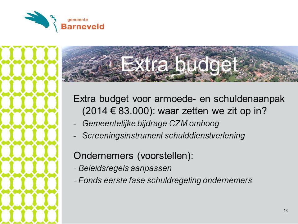 13 Extra budget Extra budget voor armoede- en schuldenaanpak (2014 € 83.000): waar zetten we zit op in.